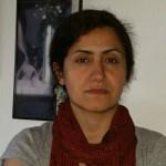 فاطمه کریمی، نویسنده و پژوهشگر